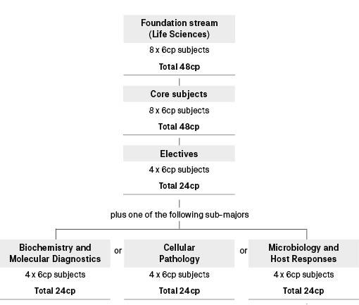 Course diagram: C10115