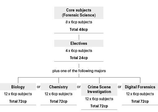 Course diagram: C10387