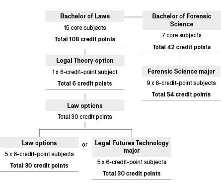 Course diagram: C10391