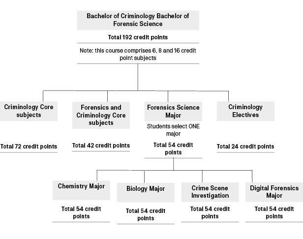 Course diagram: C10448